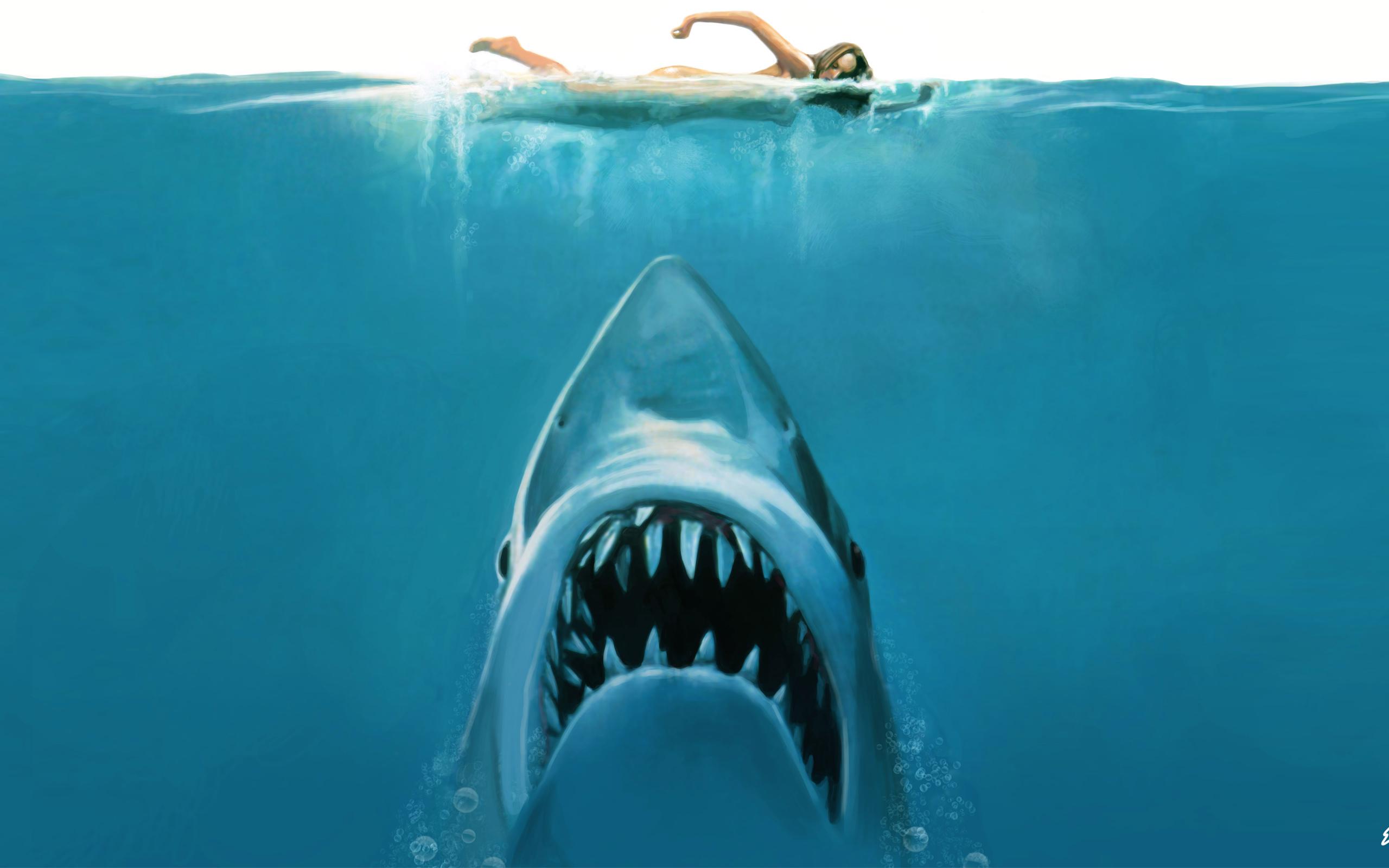 """Cum a facut """"Falci"""" sa ne fie frica de rechini"""