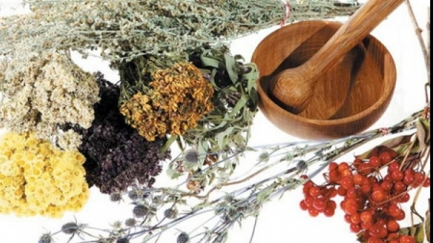 Doza ta zilnica de sanatate: ceaiul de musetel